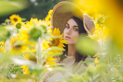 Young girl in a hat on a field of sunflowers Stock Image