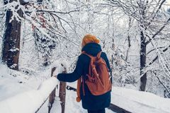 A young girl is having a walk through a thick forest during a beautiful winter day royalty free stock photography