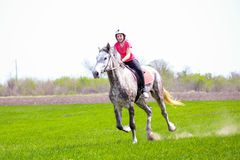 Young girl in a helmet riding a dapple-grey horse on a grass field royalty free stock photo