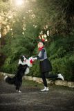 A young girl and her dog border collie playing outdoors royalty free stock images