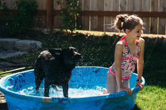 Young girl and her dog playing with water. Royalty Free Stock Photo