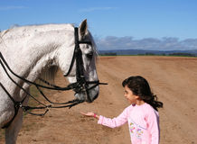 Young girl and her horse. Little girl playing with her horse Stock Photos