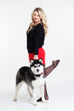 Young girl with her husky dog  on white Stock Photography