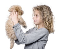 Young girl with her toy Poodle puppy (9 weeks old) Royalty Free Stock Image
