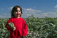 Young girl holding artichok. Smiling young girl with red sweatshirt holding artichoke in an artichoke field Stock Photos