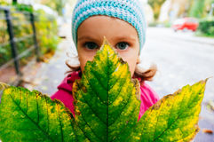 Young girl holding autumn leaf Royalty Free Stock Photography