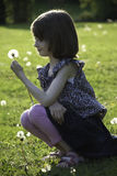 A young girl is holding a dandelion she has just picked Stock Photos