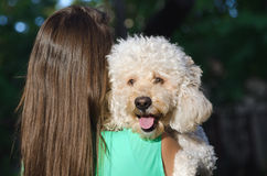 Young girl holding dog Royalty Free Stock Image