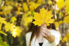 Young girl holding a fallen leaf Royalty Free Stock Photography
