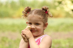 Young girl holding little chicken Royalty Free Stock Image