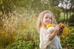 Girl holding pumpkins Royalty Free Stock Image