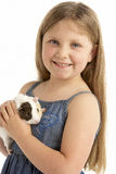 Young Girl Holding Pet Guinea Pig Royalty Free Stock Image
