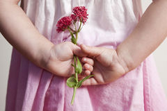 Young girl holding pink flowers behind her back Royalty Free Stock Images