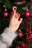Young girl holding red white lollipop for Christmas tree decoration stock photos