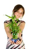 Young girl with home plant bam Royalty Free Stock Images