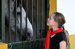 Young girl with horse. A young girl with a grey horse in a stable Stock Photography