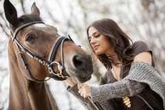 Young girl with a horse Stock Image