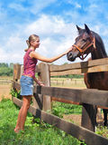 Young girl and horse Royalty Free Stock Photo
