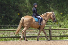 Young Girl Horse Equestrian Royalty Free Stock Images