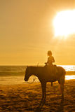 Young girl horseback riding on the beach at sunset. Pie de la Cuesta, Acapulco, Mexico Stock Images