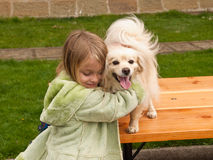 Young girl hugging a little dog Royalty Free Stock Photography