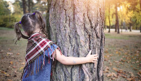 Young girl hugging tree royalty free stock photo