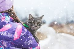Child hugs a cat in the road in winter. Royalty Free Stock Photo