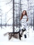 Young girl with a husky dog in a forest Stock Image