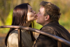 Young girl kisses in the nose a man Stock Image