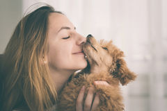 Young girl kissing her good friend dog . Background Royalty Free Stock Photography