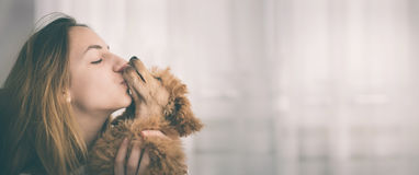 Young girl kissing her good friend dog . Stock Images