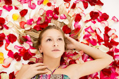 Young girl lies in the petals of roses Royalty Free Stock Images
