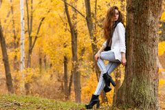 Young girl with long brow hair in autumn park. Young girl with long brown hair and grey scarf in autumn park Stock Image
