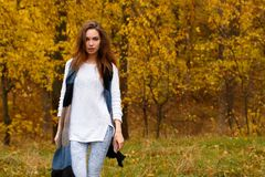 Young girl with long brown hair in autumn park. Young girl with long brown hair and grey scarf in autumn park Stock Image