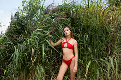 Young girl with long dark hair in red swimsuit posing outdoors in the reeds Stock Photo