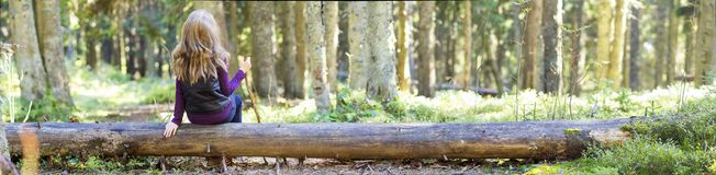 Young girl with long hair sitting on a tree log in autumn forest. Hiker woman resting Stock Photos