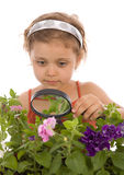 Young girl is looking through a magnifying glass Stock Photography