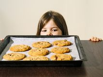Young girl looking at a tray of fresh baked cookies. Photo of a young girl staring at a tray of warm chocolate chip cookies just out of the oven royalty free stock image