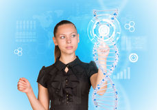 Young girl looks at model of DNA and presses her. Finger. Scientific and medical concept Stock Images