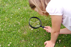 Young girl with magnifying glass Royalty Free Stock Photography