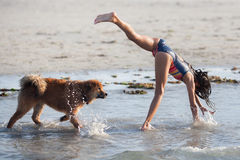 Young girl makes a handstand and her dog looks on Royalty Free Stock Photos