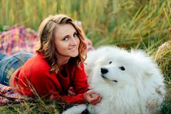 Young girl in a nature park hugging a white dog Samoyed Laika at sunset Royalty Free Stock Photo