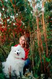 Young girl in a nature park hugging a white dog Samoyed Laika at sunset. 1 Royalty Free Stock Photo
