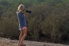 Young girl in nature taking pictures with a large dslr and a zoon lens. Young girl in nature taking pictures with a large dslr camera and a zoon lens royalty free stock images