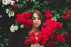 Young girl near the bush of red and white roses royalty free stock photo