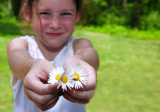 Young Girl Offering Daisies Royalty Free Stock Photos