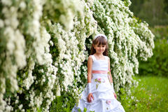 Young girl in the park Stock Images