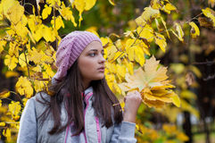 Young girl in a park in autumn Royalty Free Stock Image