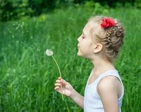 Young girl in the park blowing on dandelion Royalty Free Stock Photography