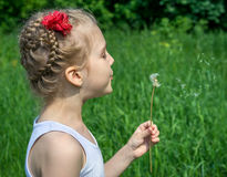 Young girl in the park blowing on dandelion Royalty Free Stock Photo